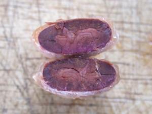theobroma-cut-fermented-bean-72