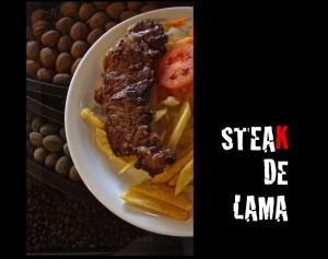 Steak-de-lama
