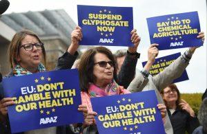 Avaaz 2